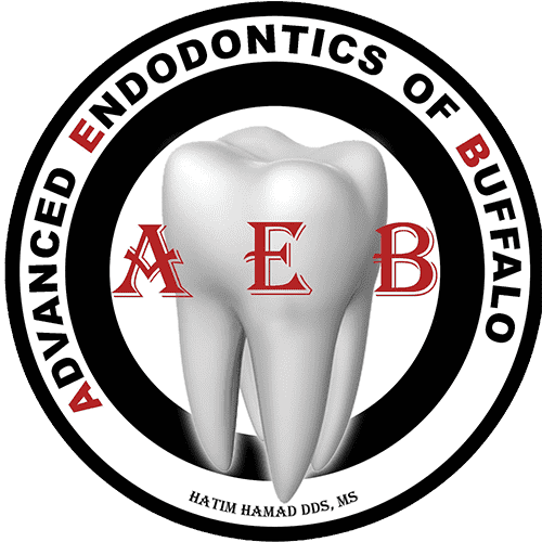 Advanced Endodontics of Buffalo